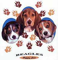 Beagle Sweaters and T-Shirts