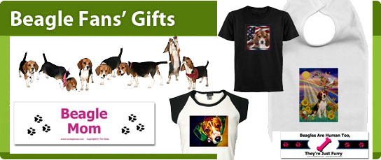 Beagle Clothing
