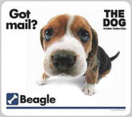 Beagle stationery