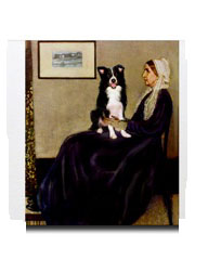 Border Collie Whistlers Mother