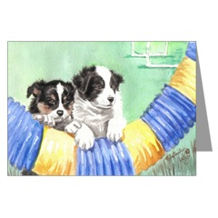 Border Collie Puppies and Agility