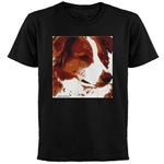 border collie shirts
