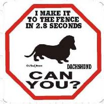 Dachshund 2.8 Seconds Sign