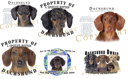 Dachshund T-Shirts and Sweaters