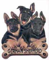 german shepherd dog pups tshirt and sweater