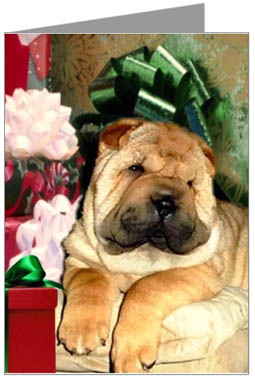Shar-Pei Puppy Christmas Cards